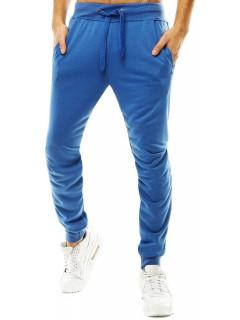 Kelnės (Mėlynos) Nylson